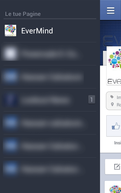 Gestore Pagine Facebook Android - menu