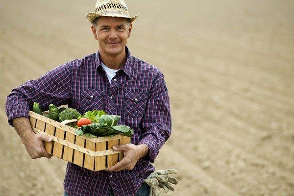 contadini online